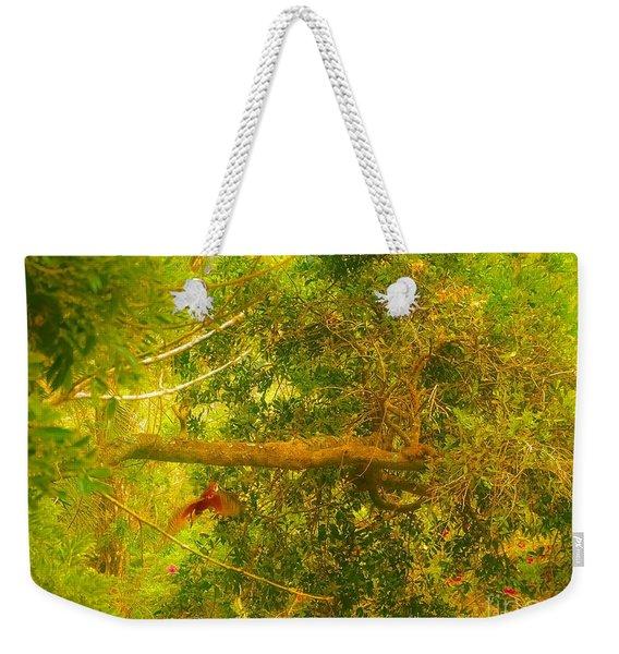 Misty Yellow Hue- Ringed Kingfisher In Flight Weekender Tote Bag