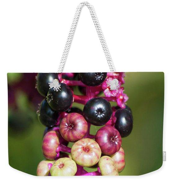Mixed Berries On Branch Weekender Tote Bag