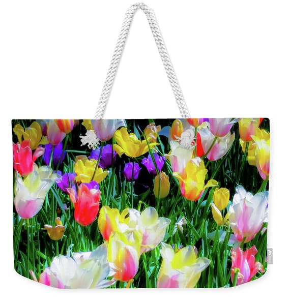 Mixed Tulips In Bloom  Weekender Tote Bag