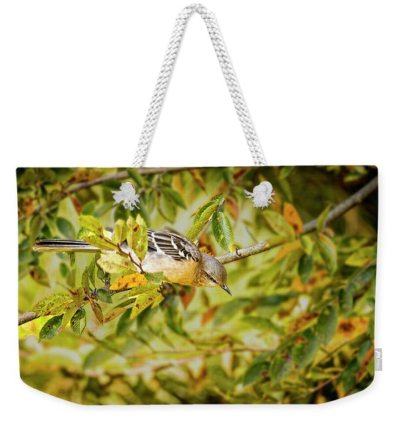 Mocking Bird Weekender Tote Bag