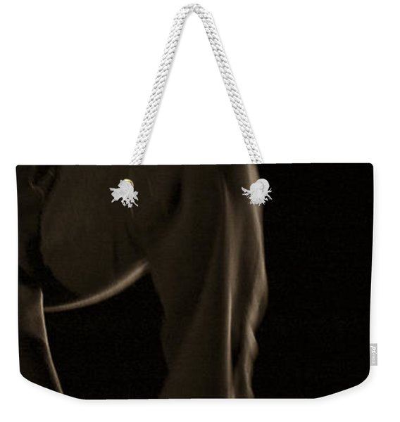 Weekender Tote Bag featuring the photograph Modern Dance 12 by Catherine Sobredo