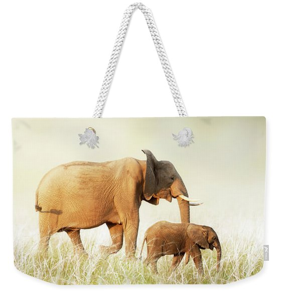 Mom And Baby Elephant Walking Through Tall Grass Weekender Tote Bag