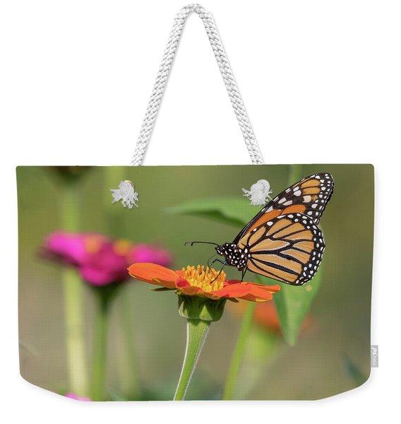Monarch 2018-10 Weekender Tote Bag