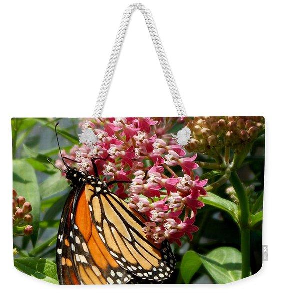 Weekender Tote Bag featuring the photograph Monarch Arc by Kristin Aquariann