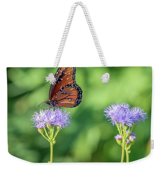 Monarch Butterfly 7476-101017-2cr Weekender Tote Bag