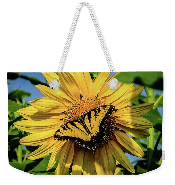 Male Eastern Tiger Swallowtail - Papilio Glaucus And Sunflower Weekender Tote Bag
