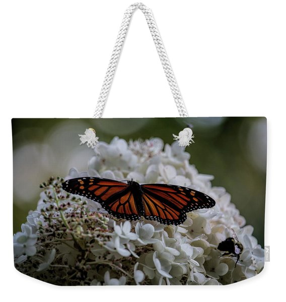 Monarch Butterfly Feeding On Hydrangea Tree Weekender Tote Bag