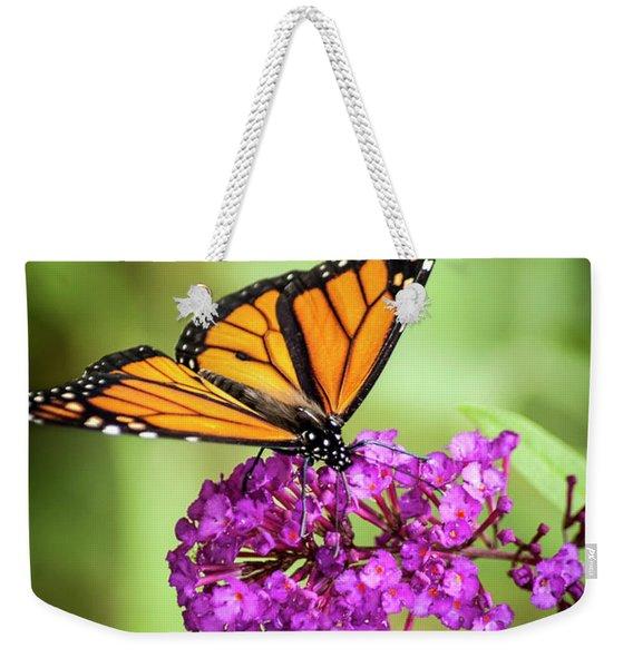 Monarch Moth On Buddleias Weekender Tote Bag