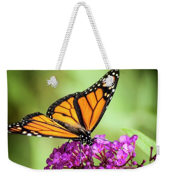 Weekender Tote Bag featuring the photograph Monarch Moth On Buddleias by Carolyn Marshall