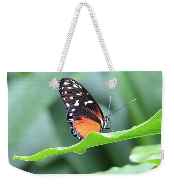 Monarch On Green Leaf Weekender Tote Bag
