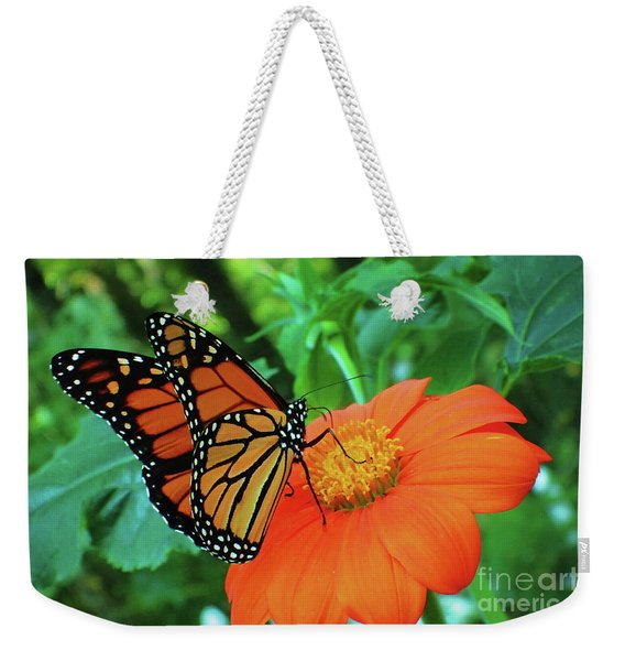 Monarch On Mexican Sunflower Weekender Tote Bag