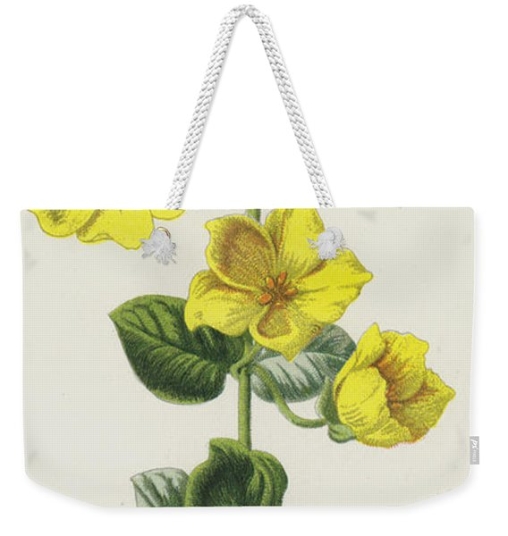 Moneywort  Weekender Tote Bag