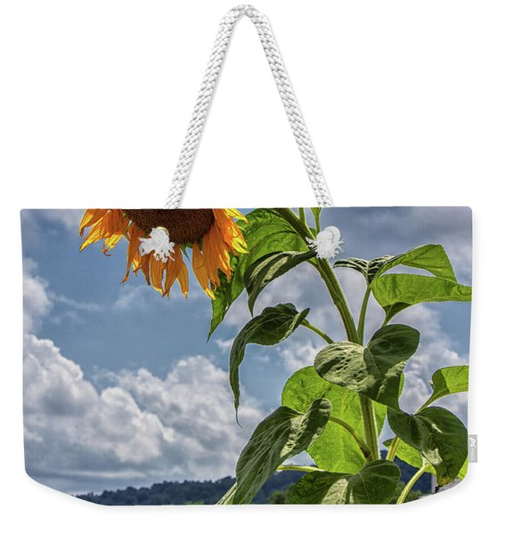Monticello Sunflower Weekender Tote Bag