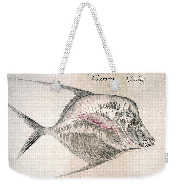 Moonfish, 1585 Weekender Tote Bag