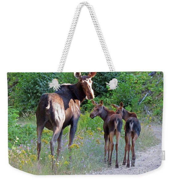 Moose Mom And Babies Weekender Tote Bag