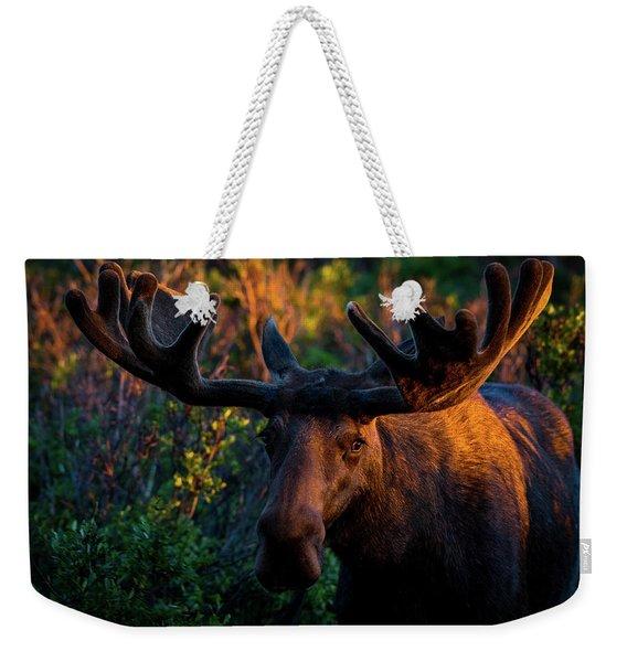 Moose Sunrise Weekender Tote Bag