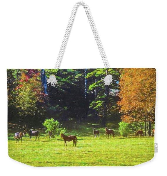 Morgan Horses In Autumn Pasture Weekender Tote Bag