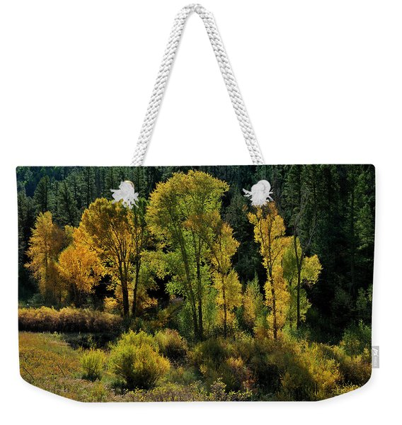 Weekender Tote Bag featuring the photograph Morning Cottonwoods by Ron Cline
