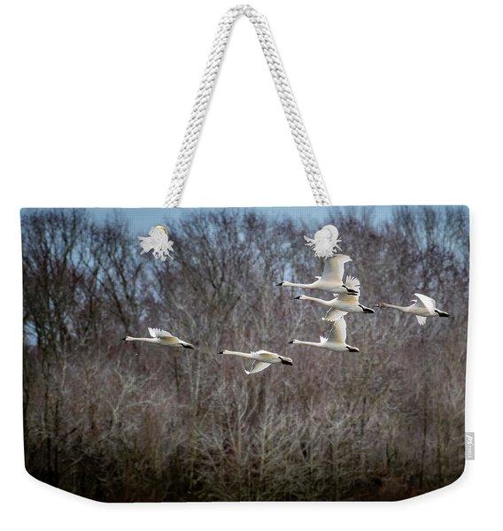 Morning Flight Of Tundra Swan Weekender Tote Bag