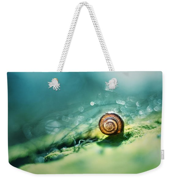 Weekender Tote Bag featuring the photograph Morning Glare by Jaroslaw Blaminsky
