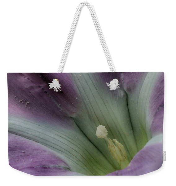 Weekender Tote Bag featuring the photograph Morning Glory Center by William Selander