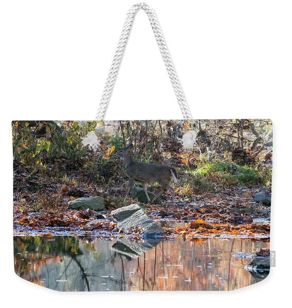 Morning In The Woods Weekender Tote Bag