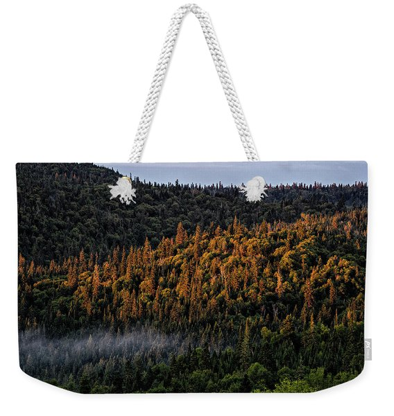 Weekender Tote Bag featuring the photograph Morning Kiss by Doug Gibbons