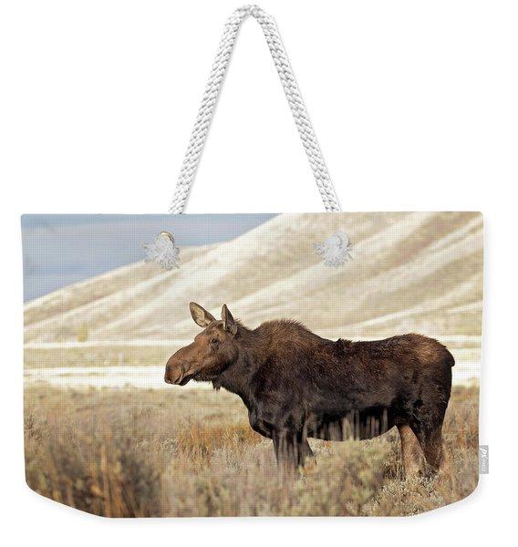 Morning Moose Weekender Tote Bag