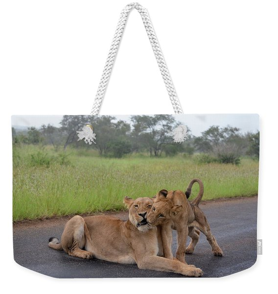 Morning Play Weekender Tote Bag