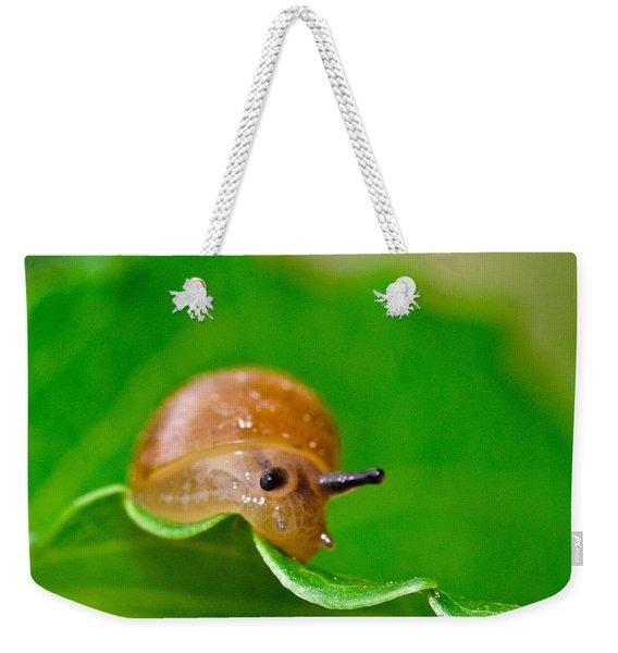 Morning Snail Weekender Tote Bag