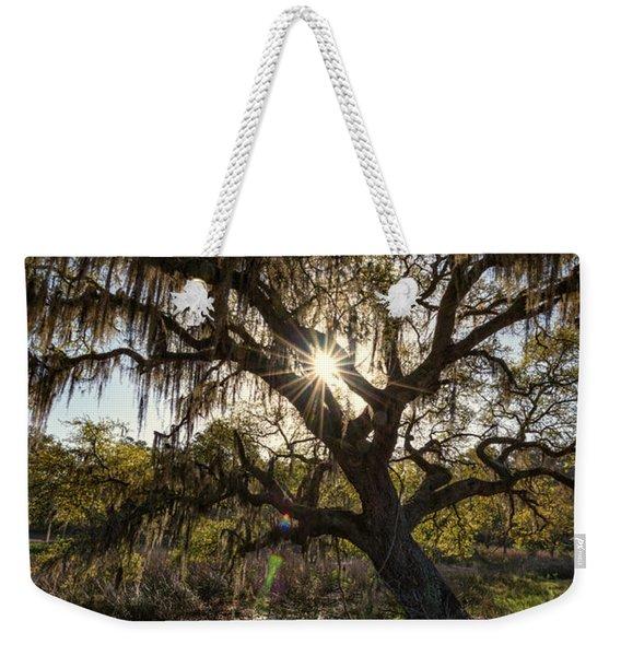 Morning Sun Through The Oak Weekender Tote Bag