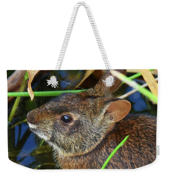 Weekender Tote Bag featuring the photograph Morning Swim by Sally Sperry