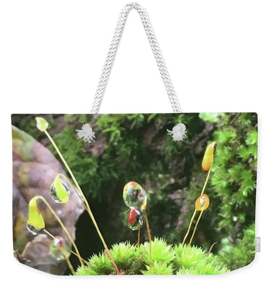 Moss And Dewdrops Weekender Tote Bag