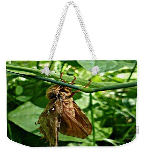 Moth At Rest Weekender Tote Bag