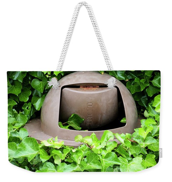 Weekender Tote Bag featuring the photograph Mother Nature Most Always Wins by Mary Lee Dereske
