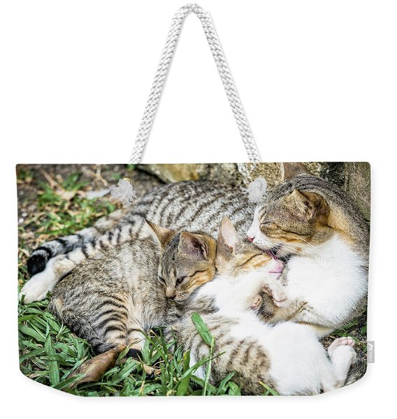 Weekender Tote Bag featuring the photograph Mother's Love by Robin Zygelman