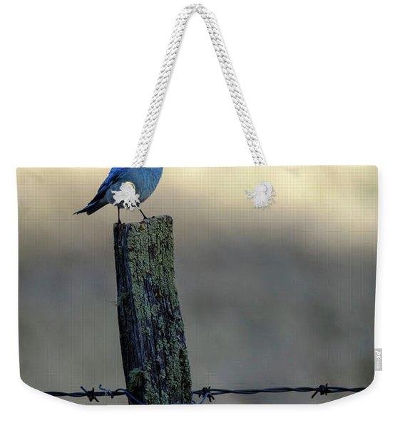 Mountain Bluebird On Wood Fence Post Weekender Tote Bag