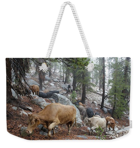 Mountain Climbing Weekender Tote Bag