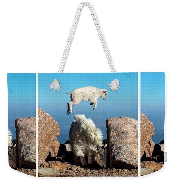 Mountain Goat Leap-frog Triptych Weekender Tote Bag