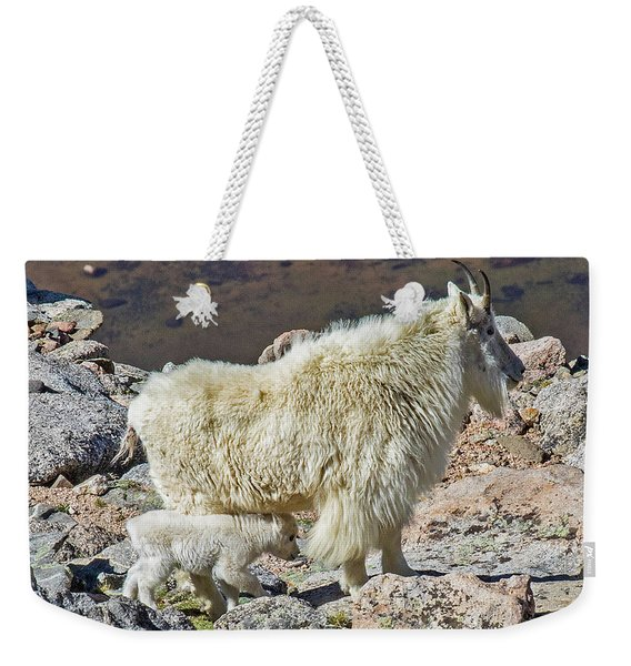 Mountain Goat With Her Kid Weekender Tote Bag