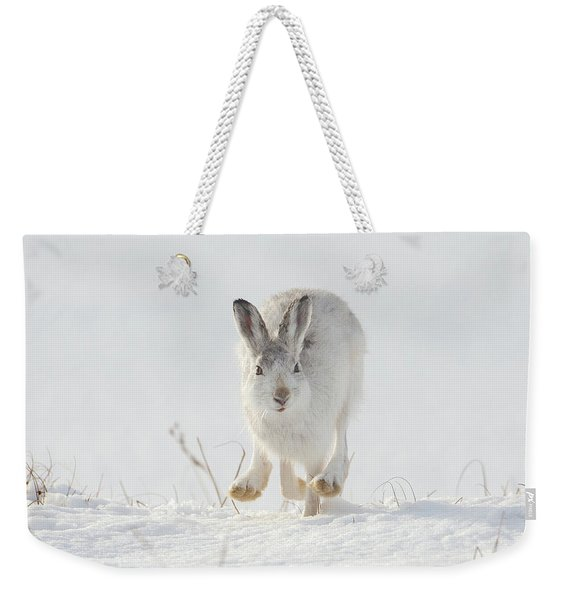 Mountain Hare Approaching Weekender Tote Bag