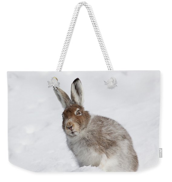 Mountain Hare In Winter Weekender Tote Bag