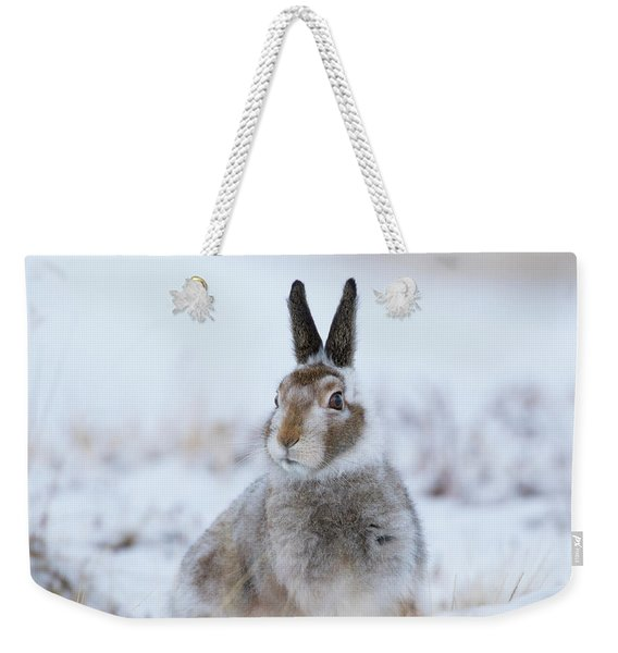 Mountain Hare - Scotland Weekender Tote Bag