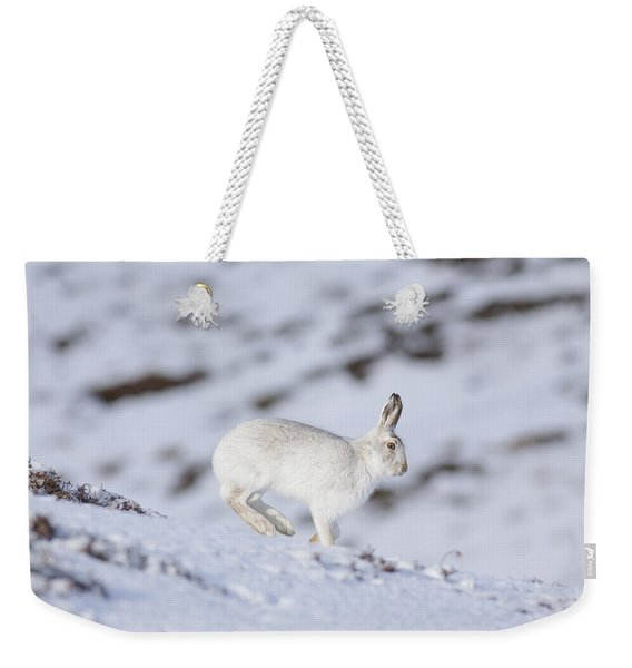 Mountain Hare - Scottish Highlands  #12 Weekender Tote Bag