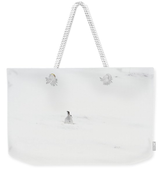 Mountain Hare Small In Frame Left Weekender Tote Bag