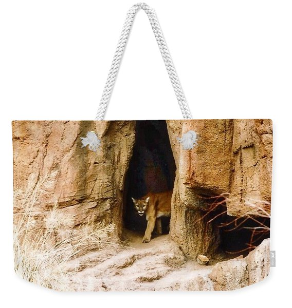 Mountain Lion In The Desert Weekender Tote Bag