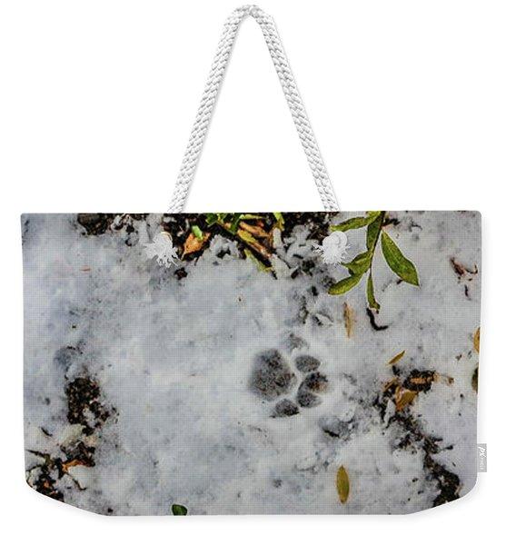 Mountain Lion Tracks In Snow Weekender Tote Bag