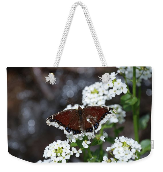 Weekender Tote Bag featuring the photograph Mourning Cloak by Jason Coward