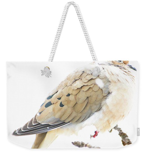 Mourning Dove, Snowy Morning Weekender Tote Bag