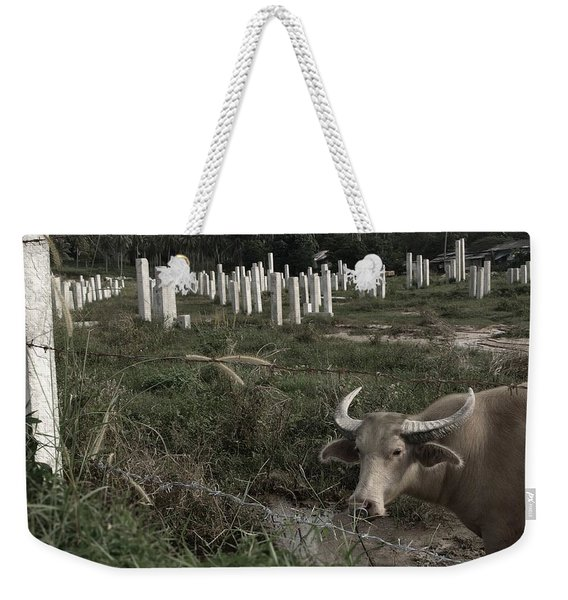 Mourning In The Palm-tree Graveyard Weekender Tote Bag